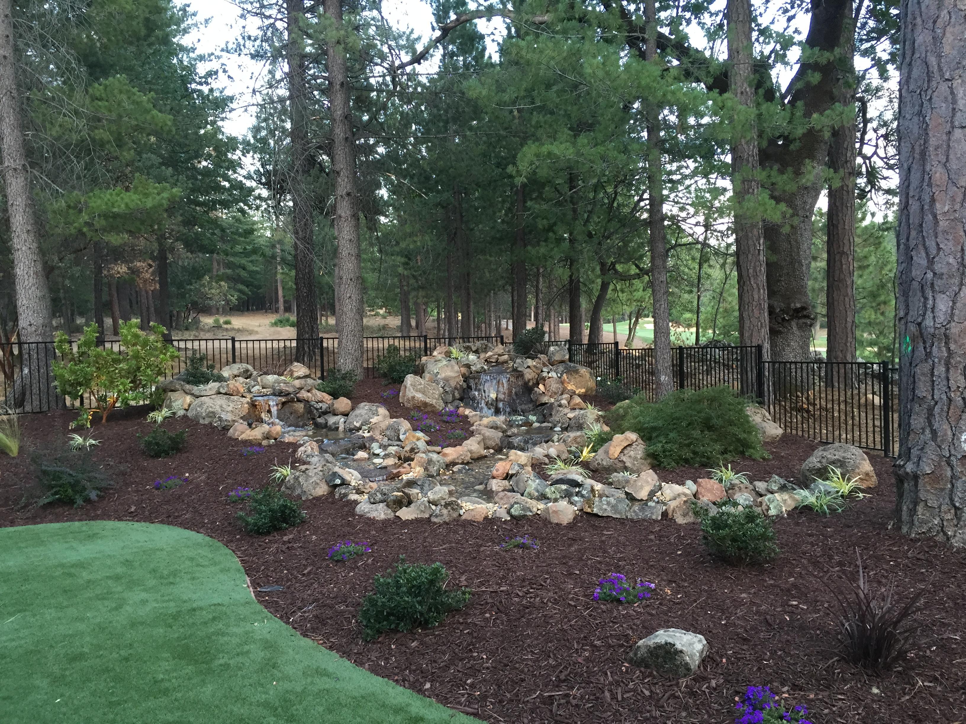Residential landscape maintenance sacramento ca aronson for Residential landscaping