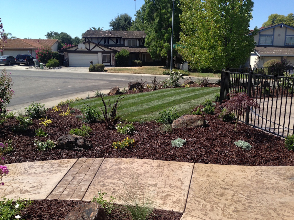 Commercial landscaping gallery aronson landscape for Landscaping rocks sacramento
