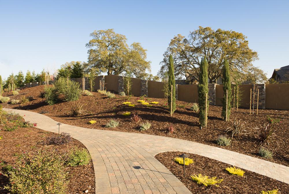 Landscape Design Yuba City