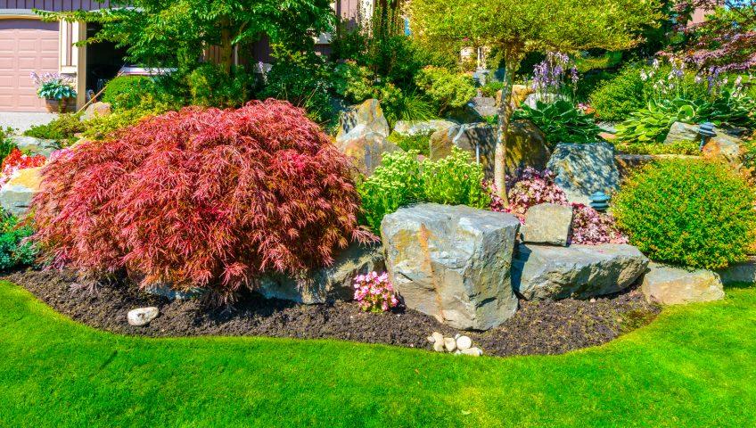Landscaper Sacramento CA