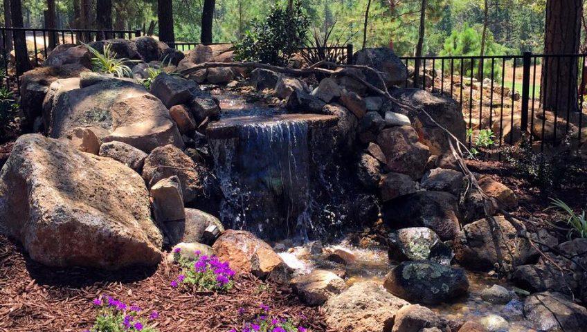 Residential Landscaping Sacramento