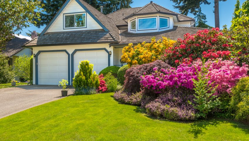 Residential Landscaping Auburn CA