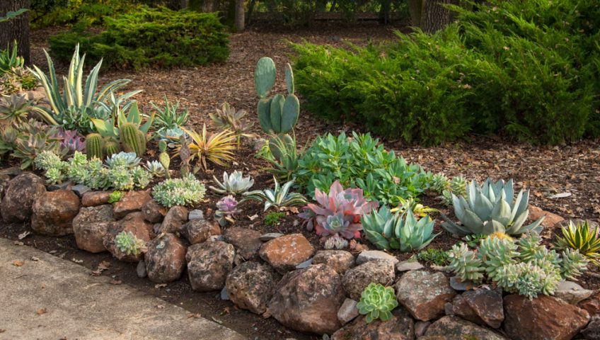 affordable-landscaping-auburn-ca